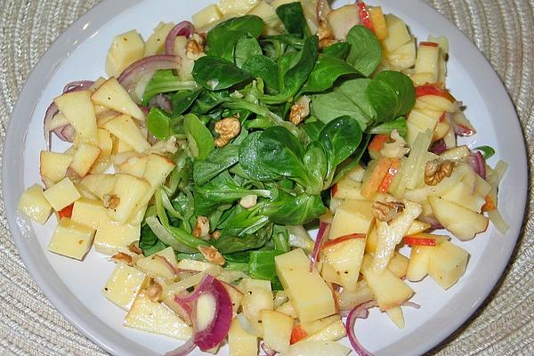 Apple – Onion – Cheese – Salad